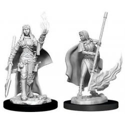 Miniatures Pathfinder