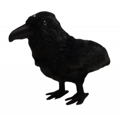 Game of Thrones Plush Figure Three-Eyed Raven 25 cm